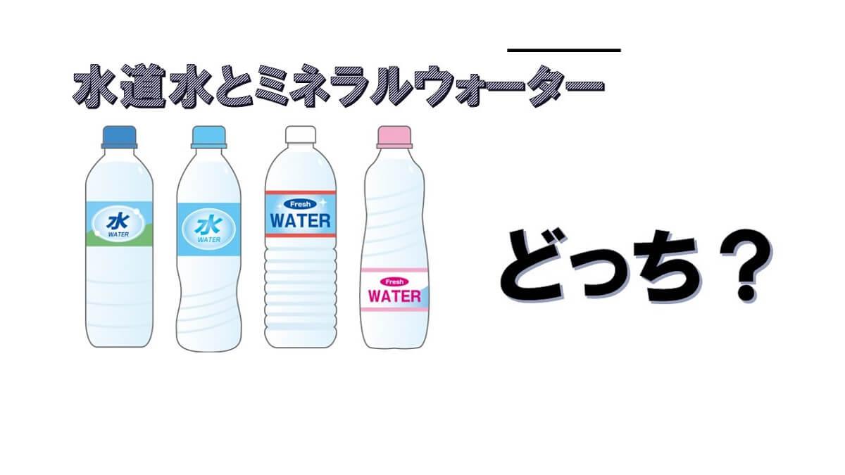 水道水とミネラルウォーター、犬の飲み水は結局どれが1番いいの?