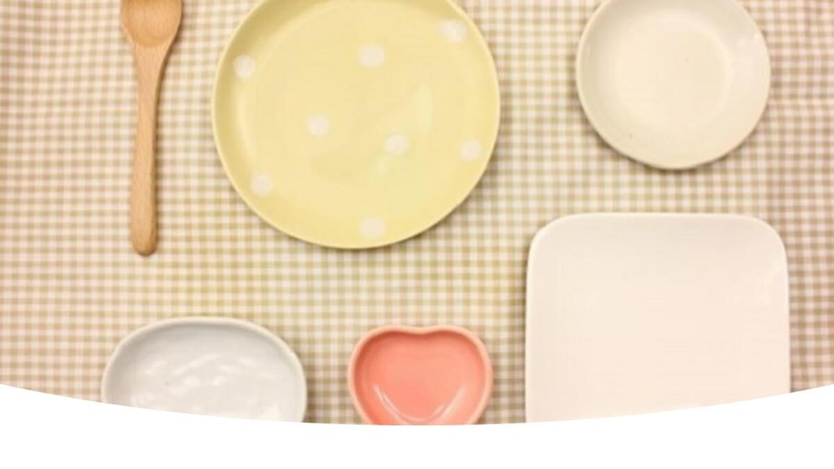 犬用の食器は絶対に陶器製がいいよ!餌の丸呑みはやめさせるべき?