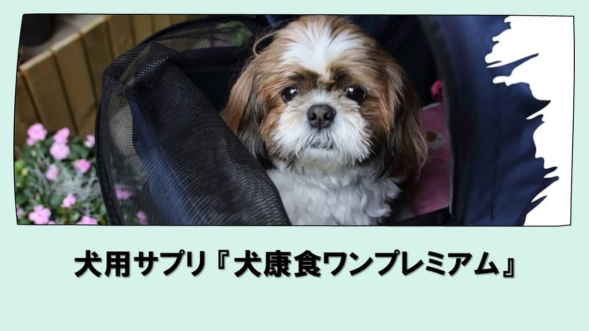 犬康食ワンプレミアム
