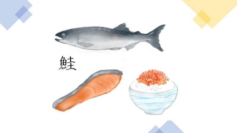 鮭を与える際の注意点と調理の仕方