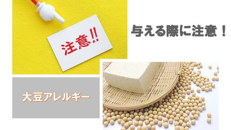豆腐など大豆加工品を愛犬に与える際に注意すること